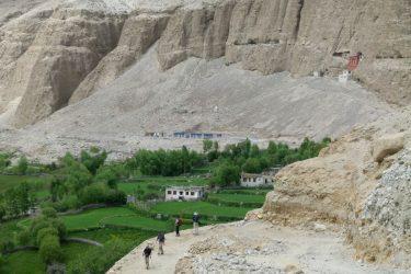 Wandelreis Changtang Pangong Tso Nubra Ladakh India | Snow Leopard (11)