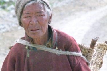 Wandelreis Changtang Pangong Tso Nubra Ladakh India | Snow Leopard (14)