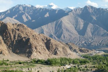Wandelreis Changtang Pangong Tso Nubra Ladakh India | Snow Leopard (07)