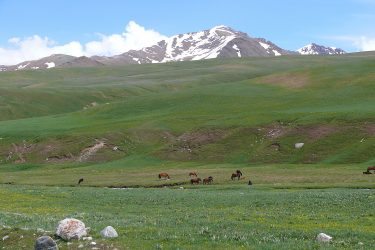 Aktieve reis Issy Kul Hemelse Bergen Bishkek Kirgizië of beklim Peak Lenin   Snow Leopard 10
