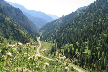 Aktieve reis Issy Kul Hemelse Bergen Bishkek Kirgizië of beklim Peak Lenin   Snow Leopard 13