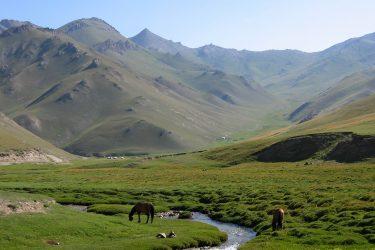 Aktieve reis Issy Kul Hemelse Bergen Bishkek Kirgizië of beklim Peak Lenin   Snow Leopard 16
