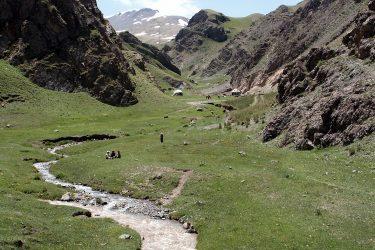 Aktieve reis Issy Kul Hemelse Bergen Bishkek Kirgizië of beklim Peak Lenin   Snow Leopard 18