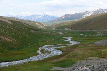 Aktieve reis Issy Kul Hemelse Bergen Bishkek Kirgizië of beklim Peak Lenin   Snow Leopard 02