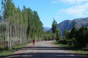 Aktieve fietsreis Issy Kul Hemelse Bergen Bishkek Kirgizië of beklim Peak Lenin   Snow Leopard 06