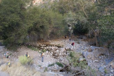 Wandelreis Namibië Etosha Windhoek woestijn sossusvlei | Snow Leopard 10