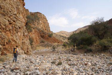 Wandelreis Namibië Etosha Windhoek woestijn sossusvlei | Snow Leopard 13