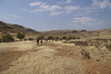 Wandelreis Namibië Etosha Windhoek woestijn sossusvlei | Snow Leopard 14