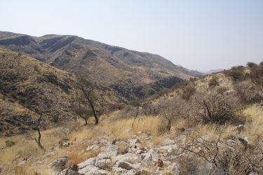 Wandelreis Namibië Etosha Windhoek woestijn sossusvlei | Snow Leopard 15