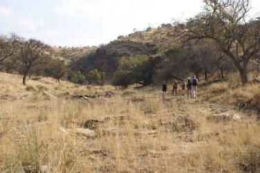 Wandelreis Namibië Etosha Windhoek woestijn sossusvlei | Snow Leopard 07