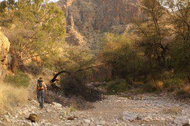 Wandelreis Namibië Etosha Windhoek woestijn sossusvlei | Snow Leopard 09