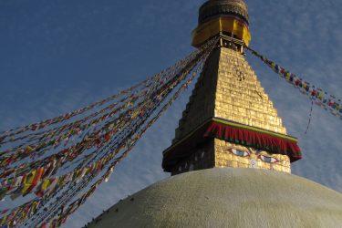 Bouddnath Nepal | Snow Leopard (75) Kathmandu | Snow Leopard