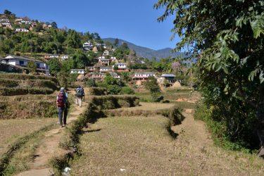 Panchase Danda Poon Hill trektocht Annapurna, Nepal   Snow Leopard(24)