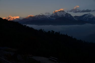 Panchase Danda Poon Hill trektocht Annapurna, Nepal   Snow Leopard(36)