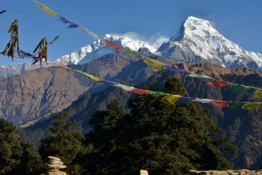 Panchase Danda Poon Hill trektocht Annapurna, Nepal | Snow Leopard(39)