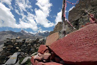 Trektocht Phu en Nar Annapurna Nepal | Snow Leopard (29)