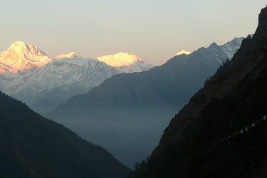 Trektocht Tsum Valley met Ganesh Basiskamp | Snow Leopard (43)