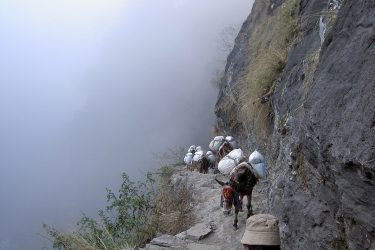Trektocht Tsum Valley met Ganesh Basiskamp | Snow Leopard (83)