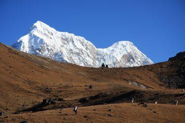Trektocht Numbur Sherpagebied Everest Nepal | Snow Leopard (25)