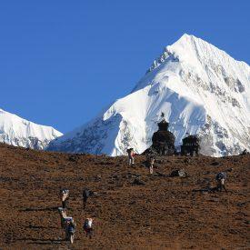 Trektocht Numbur Sherpagebied Everest Nepal | Snow Leopard (26)