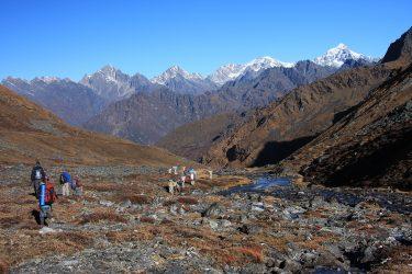 Trektocht Numbur Sherpagebied Everest Nepal | Snow Leopard (34)
