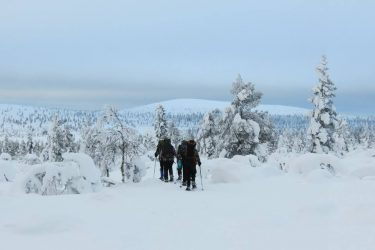 Sneeuwschoenwandelen reis Lapland Poolcircel Finland | Snow Leopard (04)