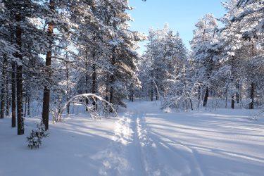 Sneeuwschoenwandelen reis Lapland Poolcircel Finland | Snow Leopard (06)