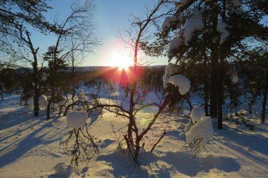 Sneeuwschoenwandelen reis Lapland Poolcircel Finland | Snow Leopard (08)