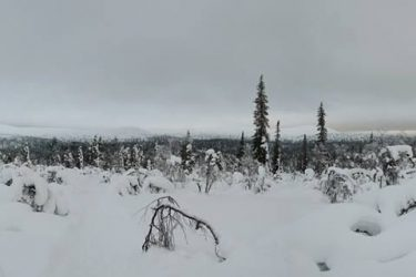 Sneeuwschoenwandelen reis Lapland Poolcircel Finland | Snow Leopard (13)