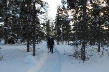 Sneeuwschoenwandelen reis Lapland Poolcircel Finland | Snow Leopard (14)
