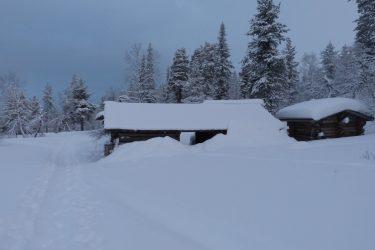 Sneeuwschoenwandelen reis Lapland Poolcircel Finland | Snow Leopard (15)