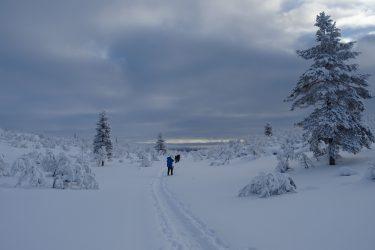 Sneeuwschoenwandelen reis Lapland Poolcircel Finland | Snow Leopard (20)