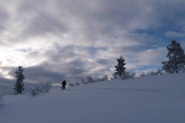 Sneeuwschoenwandelen reis Lapland Poolcircel Finland | Snow Leopard (21)