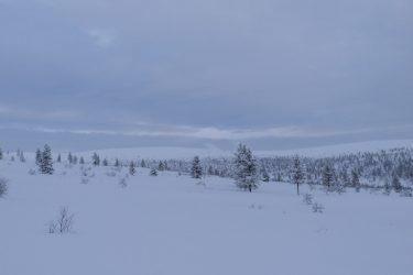 Sneeuwschoenwandelen reis Lapland Poolcircel Finland | Snow Leopard (22)