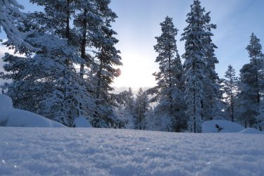 Sneeuwschoenwandelen reis Lapland Poolcircel Finland | Snow Leopard (27)