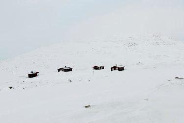 Sneeuwschoenwandelen reis Treriksrøysa Noorwegen | Snow Leopard (33)