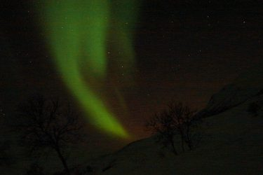 Noorderlicht - Sneeuwschoenwandelen reis Treriksrøysa Noorwegen | Snow Leopard (172)