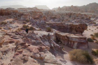Wandelreis Jordanië Woestijn Petra Wadi Rum | Snow Leopard (20)