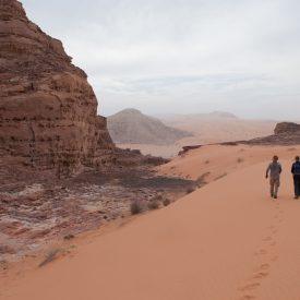 Wandelreis Jordanië Woestijn Petra Wadi Rum | Snow Leopard (29)