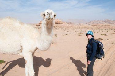 Wandelreis Jordanië Woestijn Petra Wadi Rum | Snow Leopard (37)