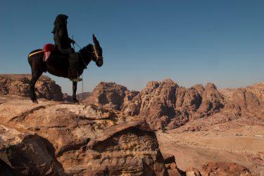 Wandelreis Jordanië Woestijn Petra Wadi Rum | Snow Leopard (67)
