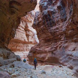 Wandelreis Jordanië Woestijn Petra Wadi Rum | Snow Leopard (78)