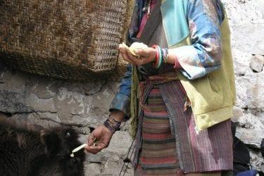 Trektocht Mt Everest Kangshung Lhasa Rongbuk Tibet | Snow Leopard 05