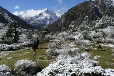 Trektocht Mt Everest Kangshung Lhasa Rongbuk Tibet | Snow Leopard 08