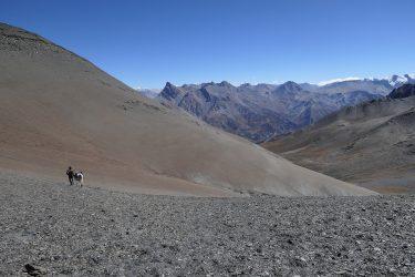 Trektocht Upper Dolpo Inner Mu La Dunai Do Nepal | Snow Leopard (20)