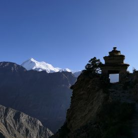 Trektocht Upper Dolpo Inner Mu La Dunai Do Nepal | Snow Leopard (25)