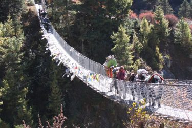 Trektocht Everest Mani Rimdu festival Tengboche Kala Patthar Cho La Gokyo | Snow Leopard 08