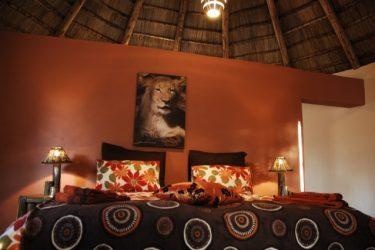 ZaZoe Xperience 4x4 kampeerreis Zuid-Afrika Avontuur | Snow Leopard (28)