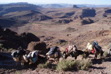 Wandelreis Jbel Saghro Hoge Atlas Berber Ouarzazate | Snow Leopard 30