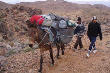 Wandelreis Jbel Saghro Hoge Atlas Berber Ouarzazate | Snow Leopard 06
